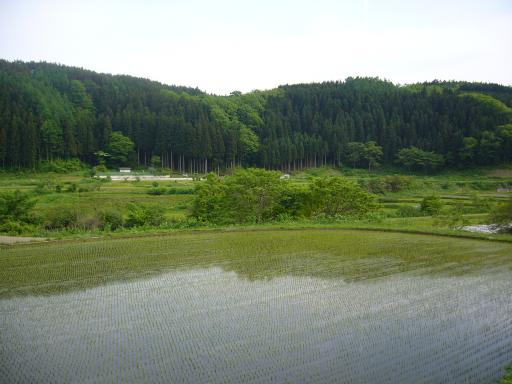 Typical Herai landscape